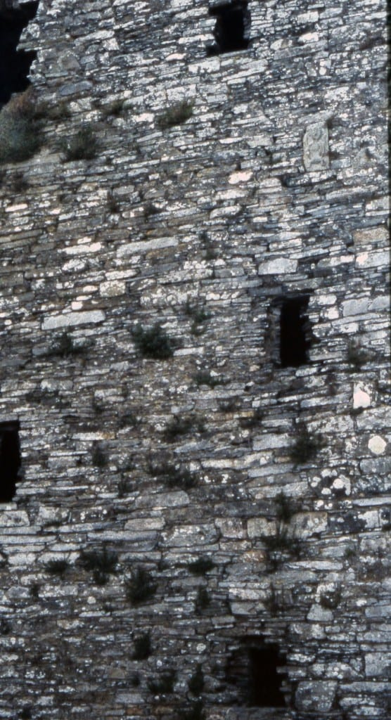 Fig. 3. Sheele-na-gig on the east wall of Ballinacarriga Castle, detail, twelfth-century (Photo: courtesy of the author)